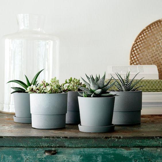 ニトリ・IKEAの植木鉢・プランターおすすめ18選!吊り下げタイプもあり