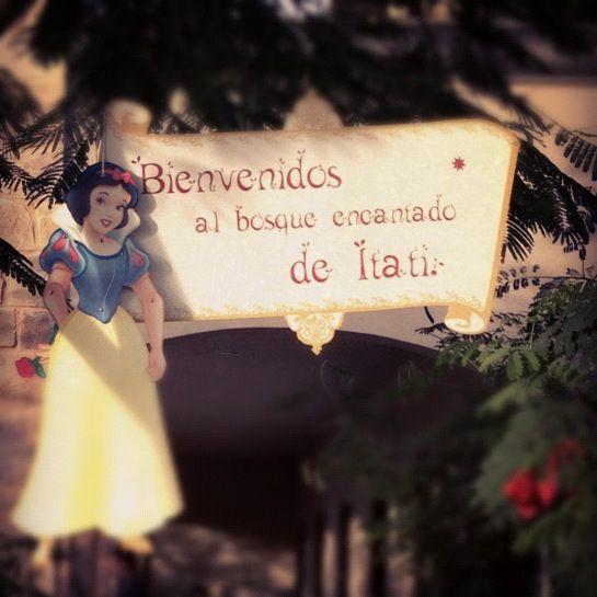 Fiesta Blanca Nieves / Bosque encantado