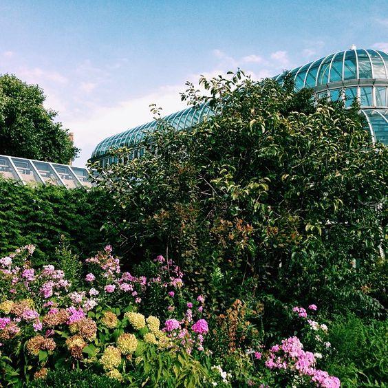 Enjoying Sunday at the Brooklyn Botanical Garden #summer #nyc #brooklyn #flowers #garden #pretty #greenhouse