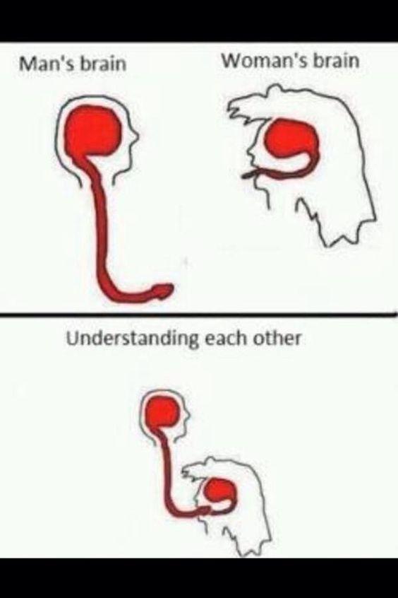Ahora lo entiendo todo