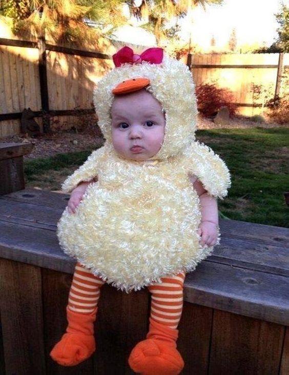 insolite bebe costume poussin