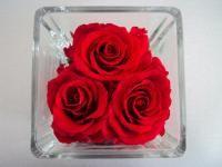 """Prolongation jusque Mercredi soir... Profitez de 35% de réduction sur la rubrique """"Fleurs naturelles stabilisées"""" Avec le code 35STAB www.artifleurs-fleurs-artificielles.com"""