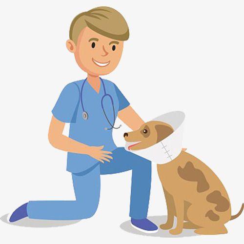 Cartoon Pet Dog And Pet Doctor Animal Doctor Cartoon Animals Dog Doctor