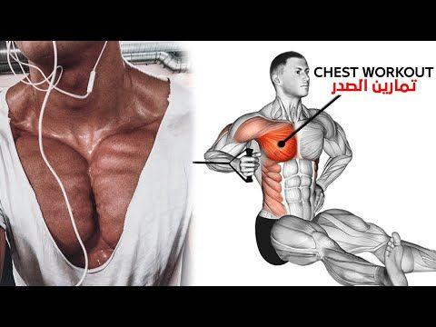 تمارين الصدر 8 وشرح كامل ستهداف جميع مناطق ضعيفة صدر 3d Youtube Chest Workout Best Chest Workout Biceps Workout At Home