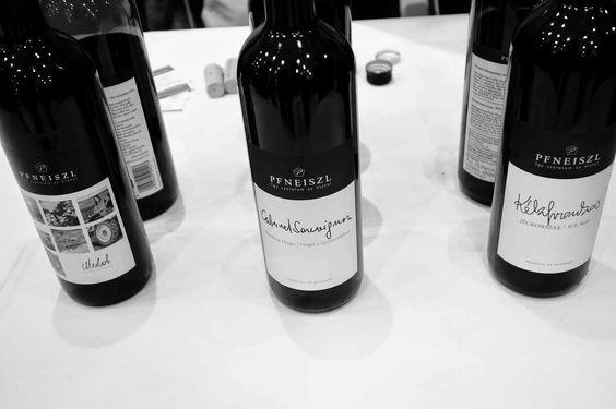 Ungarische Weine sind absolut verkannt!  #Wein #Ungarn