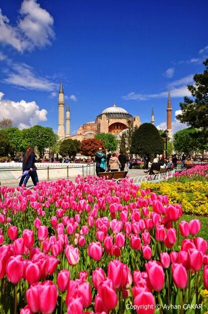 Springtime Hagia Sophia,  Sultanahmet Fatih, İstanbul Turkei