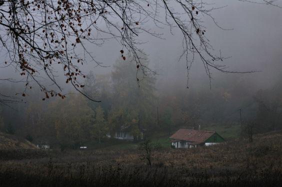 allthingseurope:  Bánkút, Hungary (by ๑۩๑ V ๑۩๑)