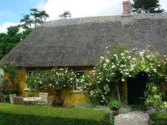 cottages adare irish cottages ireland cottage reviews