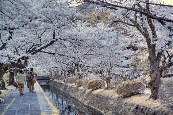 30 Lugares Que Todo Viajero Desearía Visitar | Viajes - Todo-Mail