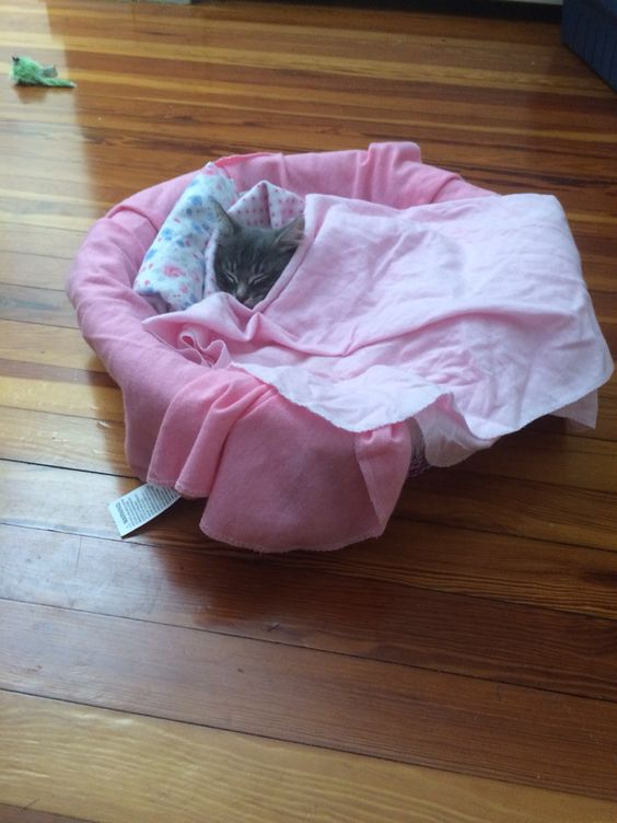 So cute tucked in her little bed!!!!!!