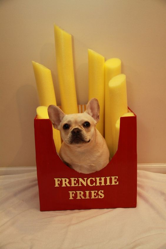 FRENCH FRIES: Perfect for your own little frenchie. Cosmo rounded up the 29 cutest pet costumes that you have to see! Find more fun Halloween costume ideas at here.