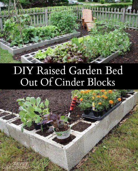 Concrete Block Garden Bed: Cinder Blocks, Raised Gardens And Raised Garden Beds On