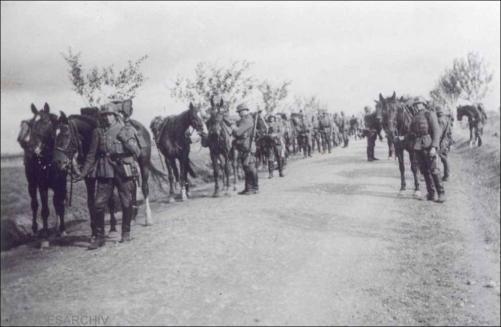 Eine Aufklärungs-Abteilung umfaßte 623 Mann, 260 Pferde (oft mehr), 5 bespannte Fahrzeuge und 130 motorisierte Fahrzeuge (davon jedoch nur 2...