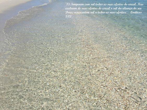 Sal da terra, uma pequena Reflexão sobre Mateus 5: 13-16