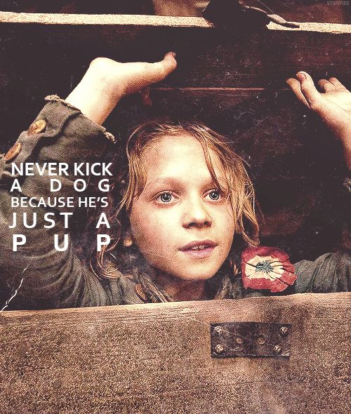 Never Kick A Dog Because He S Just A Pup