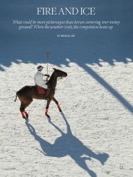 """I saw this in """"Snow Polo"""" in Town & Country December 2014."""