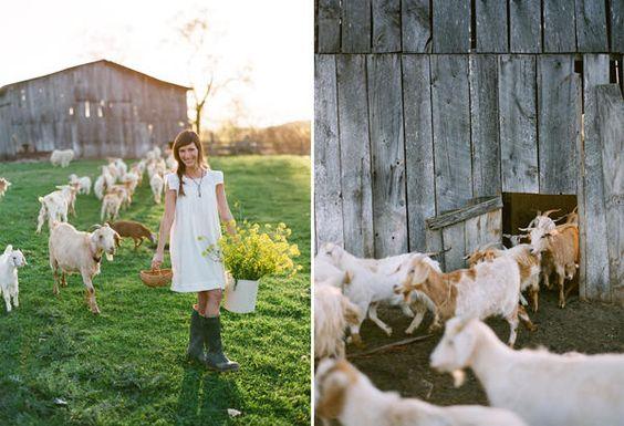 Simply farm life