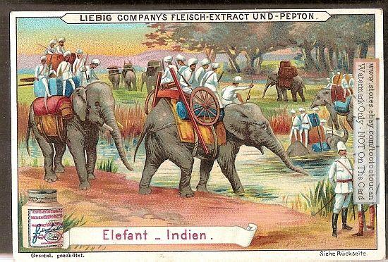Elephant Caravan Related Keywords & Suggestions - Elephant Caravan Long Tail Keywords www.suggest-keywords.com550 × 372Buscar por imagen Visitar página  Ver imagen
