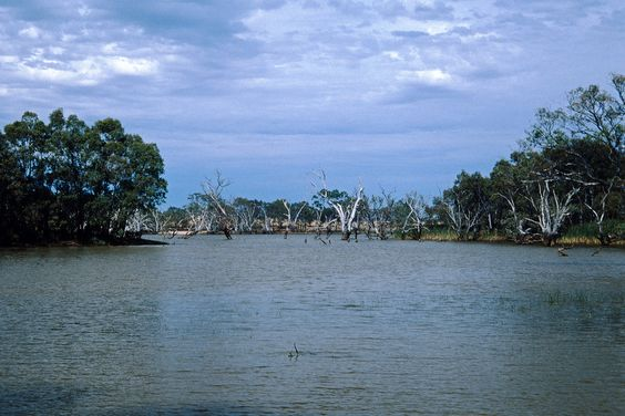 Lake in Australia by Stefan Ulrich Fischer by archiref / Collect visual inspiration on http://www.openbricks.io
