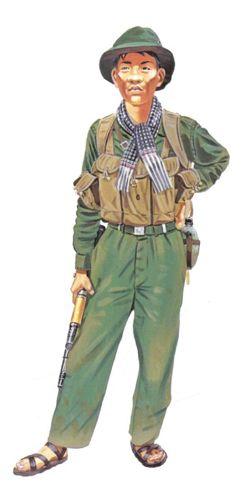 Soldado Vietcong, Fuerzas principales, 1968.