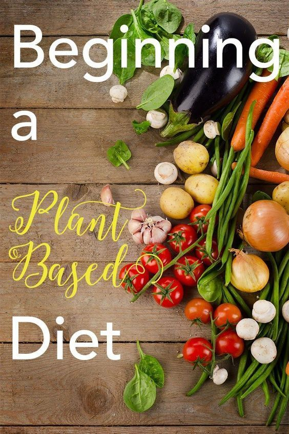 Menu Dieta Basada En Plantas