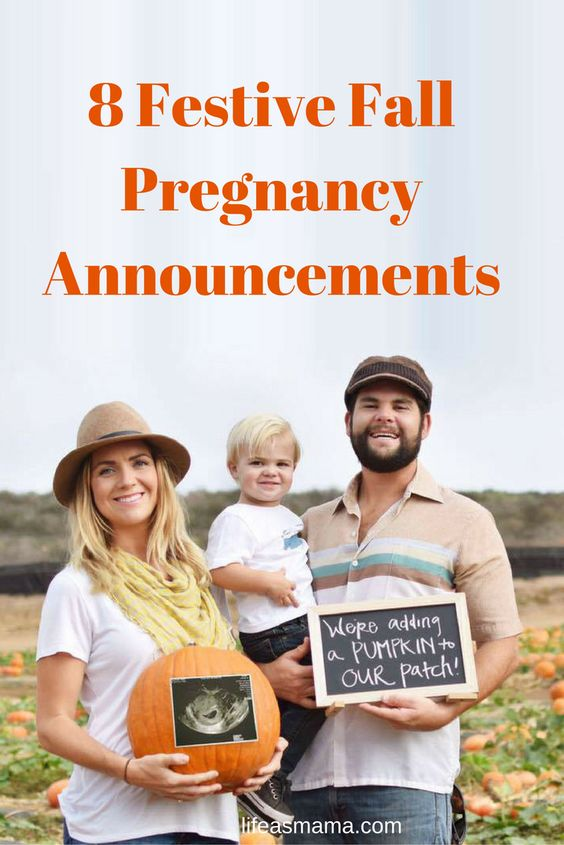 Pregnancy announcement with dogs Baby Announcement – Electronic Baby Announcements