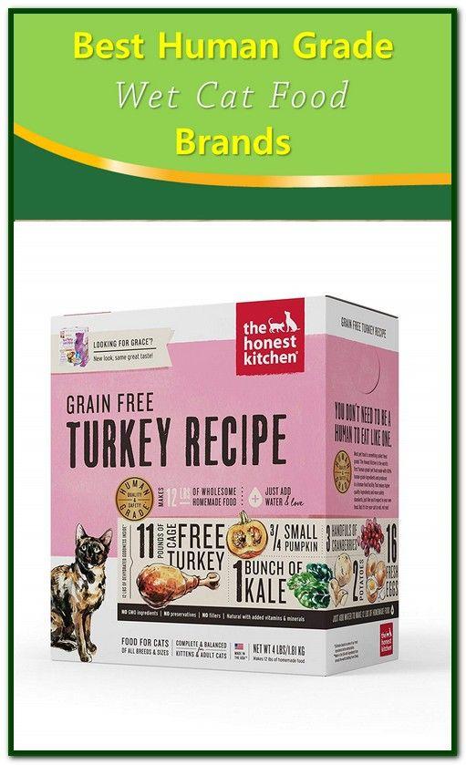 Best Human Grade Wet Cat Food Wet Cat Food Cat Food Cat Food Brands