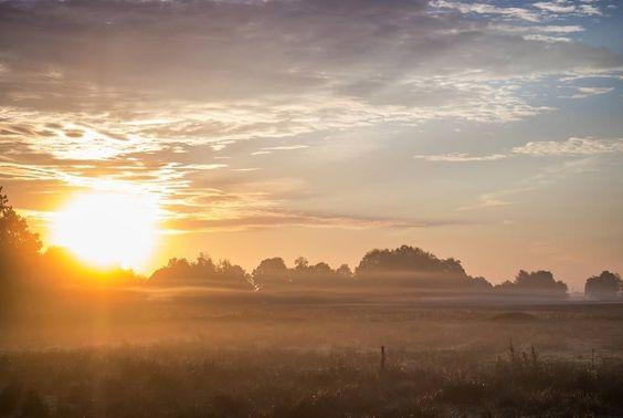 #morgennebel