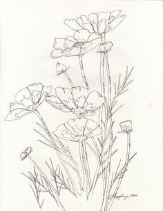 simple line drawing flower - Google Search