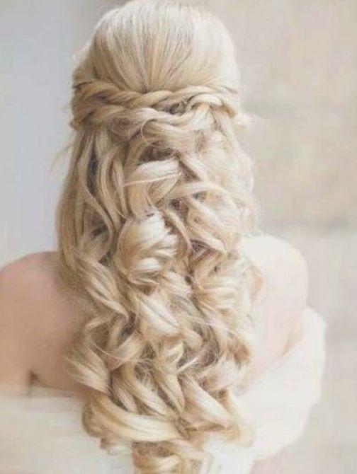 Best Wedding Winter Hairstyles For Long Hair Veils 28 Ideas Colvindareko Hair Styles Long Hair Styles Elegant Wedding Hair