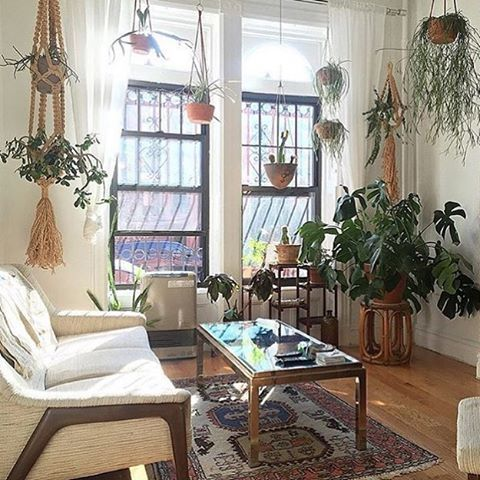 hanging plant game strong!  Regram from @thejungalow