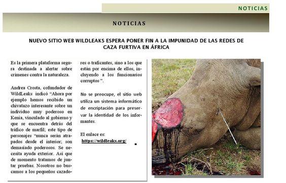 Nuevo sitio Web Wildleaks espera poner fin a la impunidad de las redes de caza furtiva en África. Revista 400 septiembre 2014 @400revista