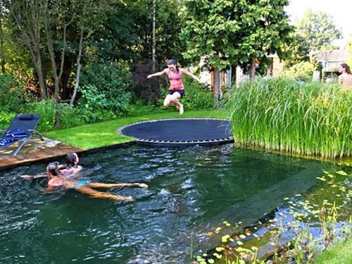 Trampoline into the pool instead of diving.