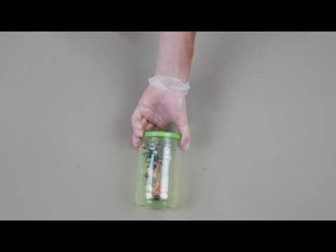 DIY Halloween bocal phosphorescent - YouTube