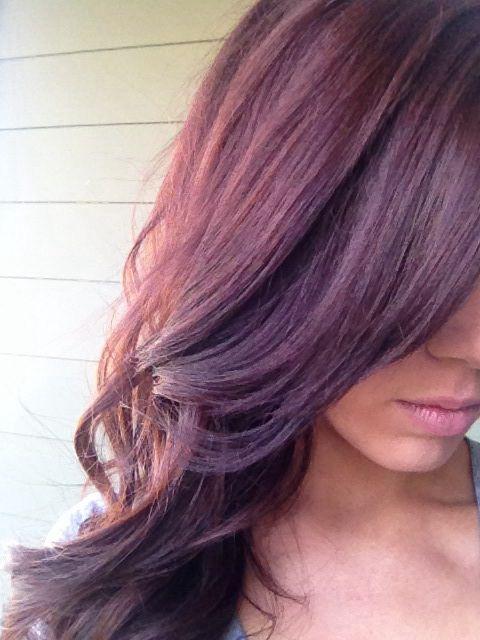 Revlon Colorsilk Luminista Haircolor 107 Violet Black Hair