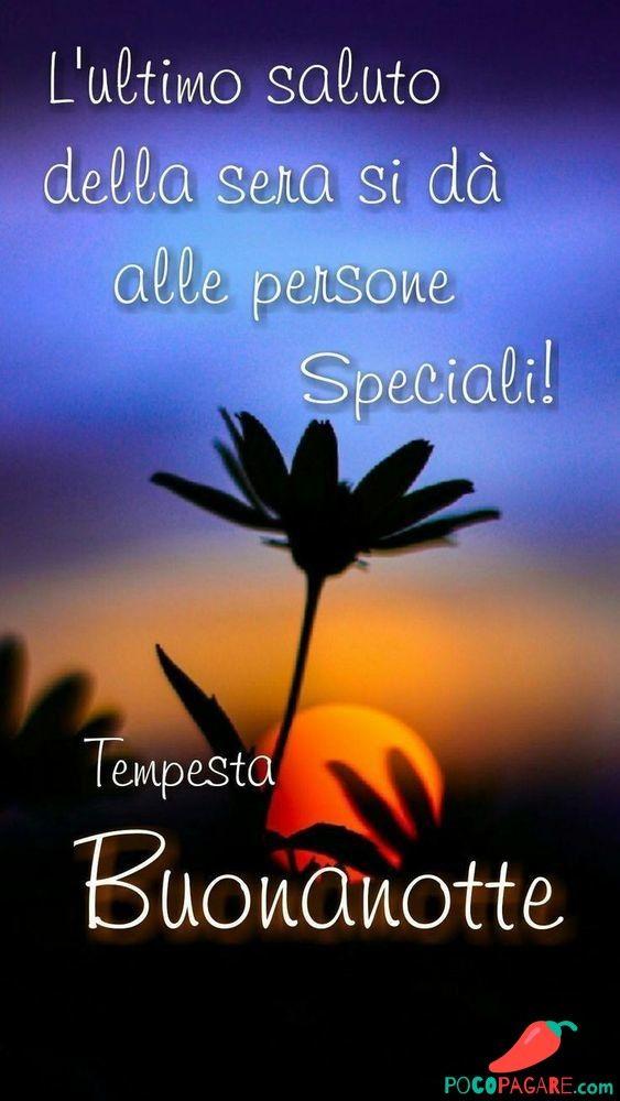 Immagini Per Buonanotte Amici Whatsapp Pocopagare Com