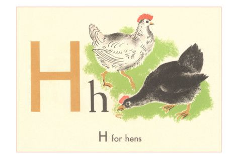 H is for Hens
