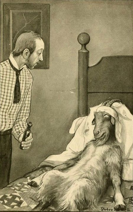 """There was something very human in the grateful look he gave me just before closing his eyes."" Illustration by Peter Newell.  The Book of Clever Beasts; Studies in Unnatural History, 1904.:"