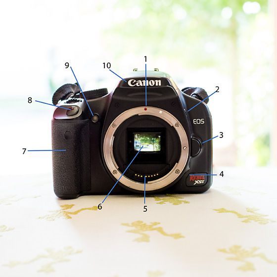 Getting to Know Your CANON Camera: DSLR Buttons