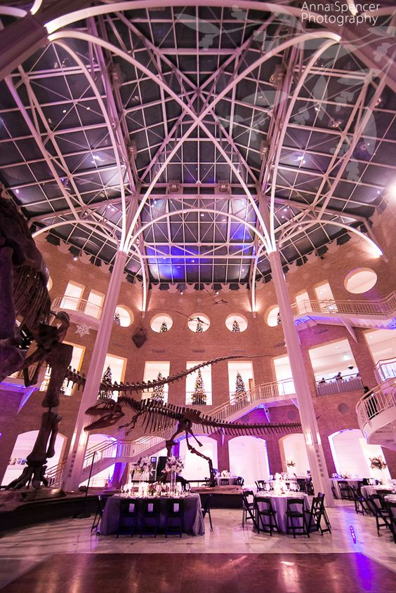 Anna and Spencer Photography. Atlanta Wedding Ceremony & Reception Venue: Fernbank Museum of Natural History. Dinosaur wedding .