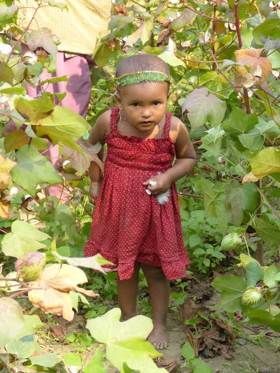 We passed by some cotton fields on the way to one of the Pebble centres and stopped to talk to the workers. This baby has been brought to the fields by her mother