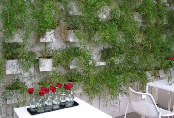 Un mur v g tal pour mon int rieur maison restaurant for Asperge plante interieur