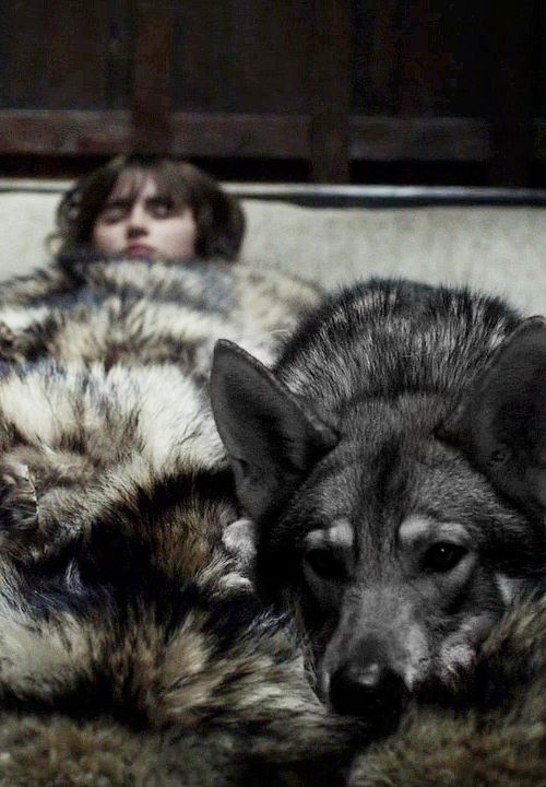 """Bran and Summer ~ I really, really miss my """"direwolf"""" Lady :( She never left me in bed when my pain was really high."""