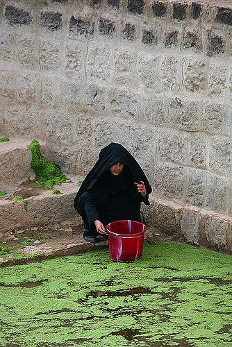 Veiled girl taking water at the cistern - Shahara - Yemen   Flickr