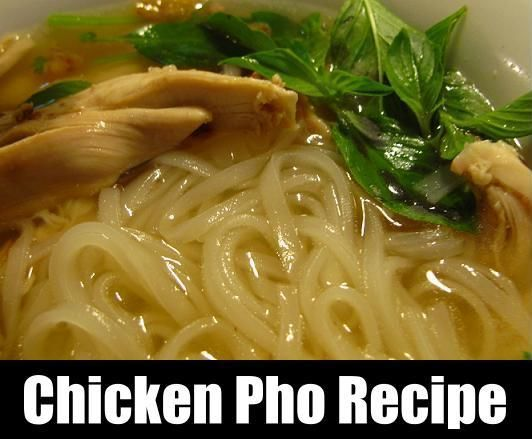 Homemade Asian Chicken Noodle Soup