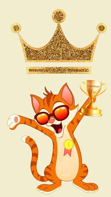 Forum - Notre cher Monsieur Bidouillot élu chat de la semaine / Unitedcats: