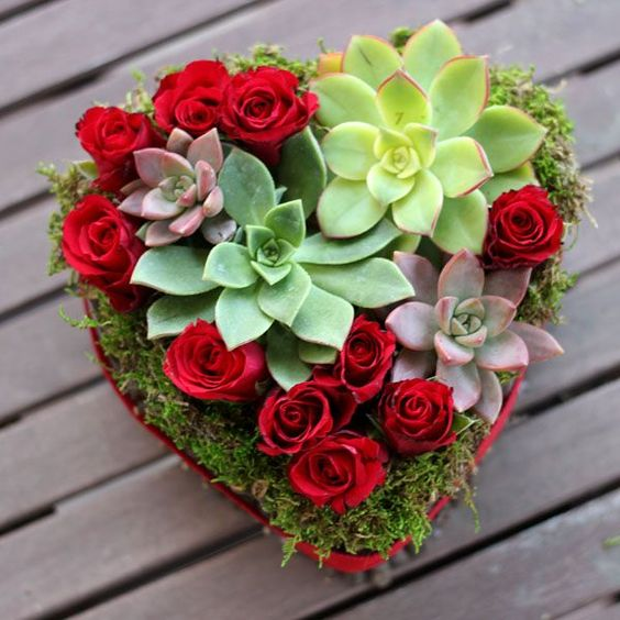 exotic valentine's day flowers