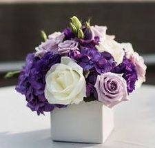 White square vases filled with cream hydragneas, purple stock flowers, purple lisianthus, green nagi, purple stock flowers, and lavender spray roses