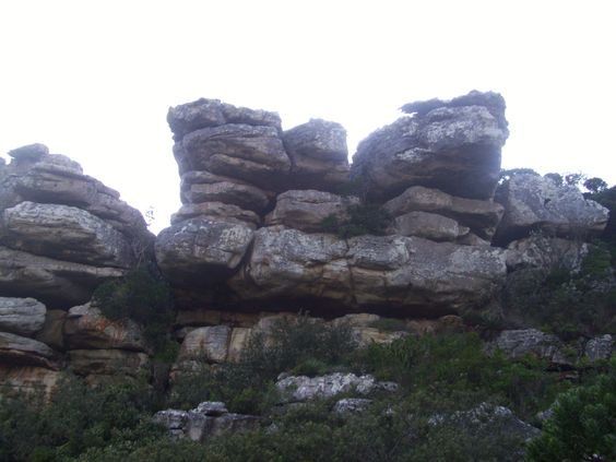 It takes me exactly 6 min to get into the wild from where I live. Thats why I love where I live: Glencairn, Cape Town