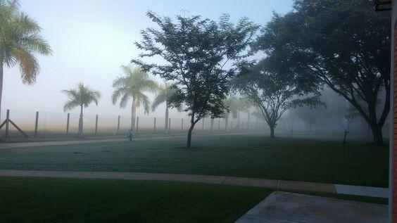 Amanhecer com névoa